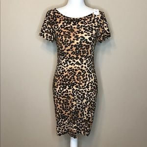 Sexy, Strechy Leopard 🐆 print dress